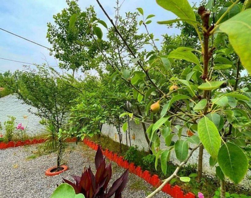 خرید ویلا باغ مستقل | 250 متر