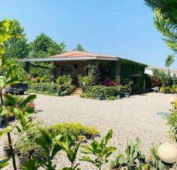 خرید ویلا باغ در آپادانا | 1100 متر